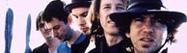 Ураган сорвал концерт Pearl Jam в Венеции